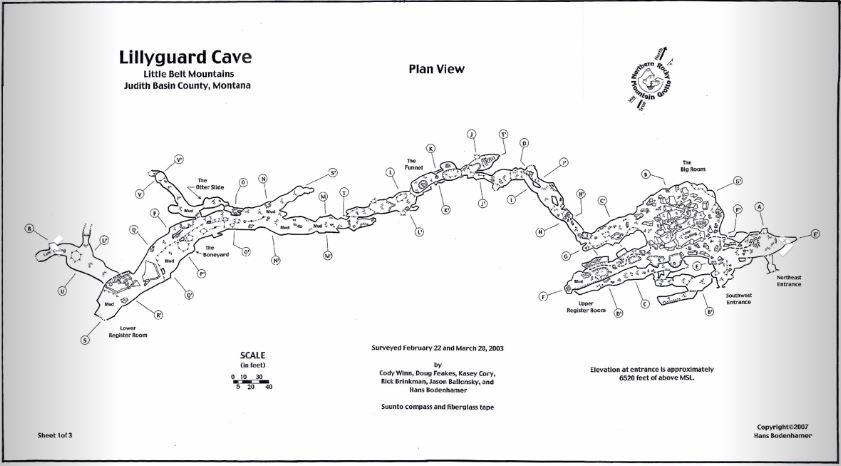 Lillyguard Cave Trip
